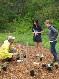 Wcbg S Edible Ecosystem Demonstration Garden A Cutting Edge Exploration In Ecology And Botany