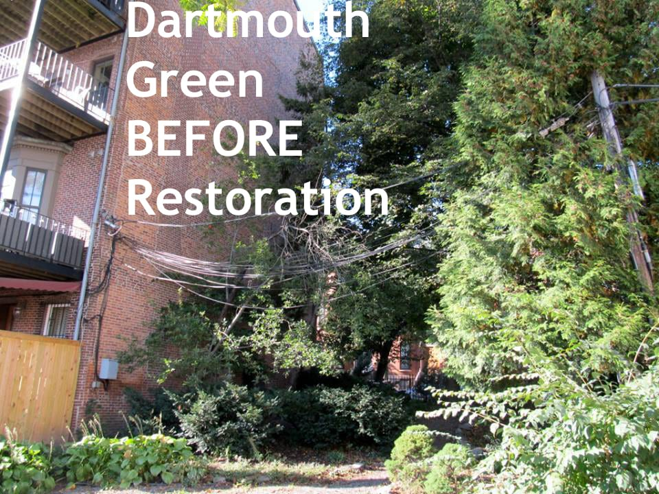 dartmouth green BEFORE with Caption