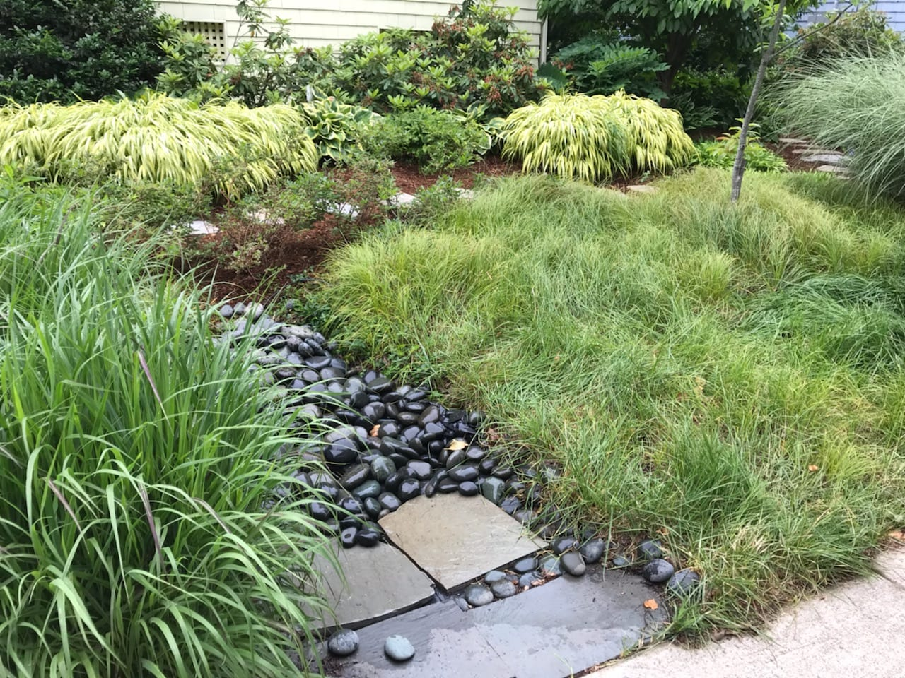 Delve into the fundamentals of sustainable landscape design. This course  will provide an overview exploration into the fundamentals of landscape  design that ... - Class: Sustainable Site Design Basics - Ecological Landscape Alliance